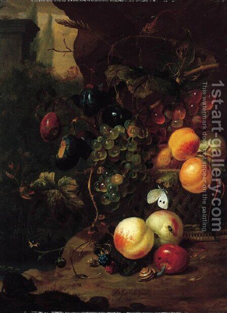 Peaches, plums, grapes on the vine and other fruit in a basket, with a snail, a dragonfly and a mouse, by a rock by Jan Mortel - Reproduction Oil Painting