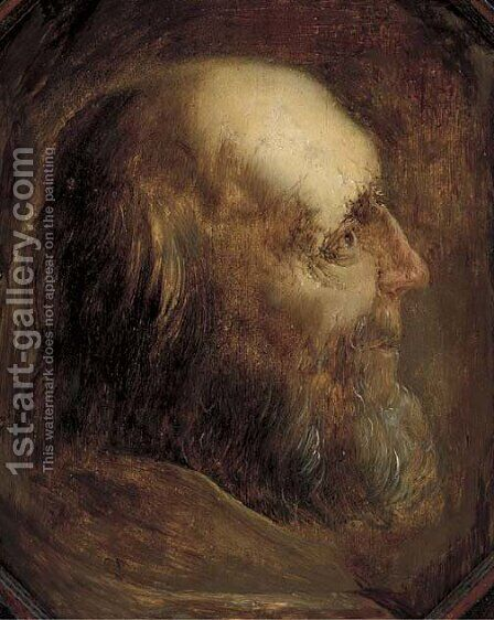 Head of an old man in profile by Jan Van Der Vinne - Reproduction Oil Painting