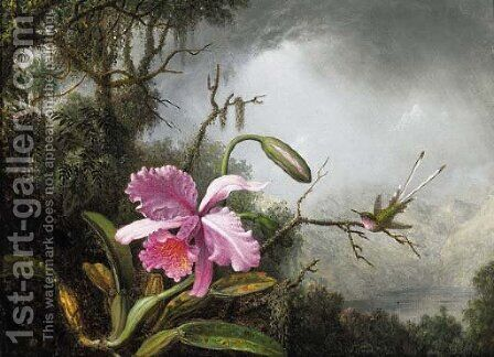 Orchid and Hummingbird, After a Storm by Martin Johnson Heade - Reproduction Oil Painting