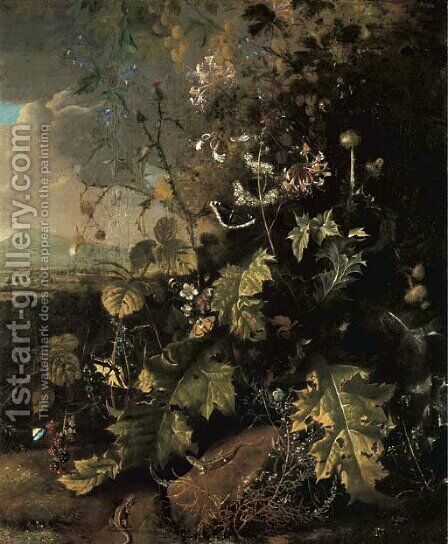 A forest floor with butterflies and lizards by Mathias Withoos - Reproduction Oil Painting