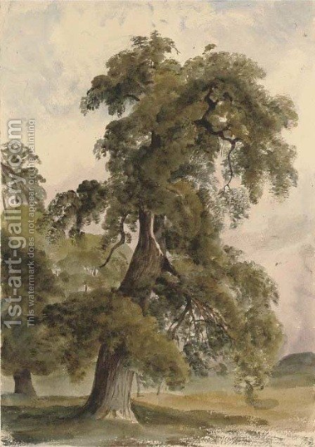 The park at Shrubland Hall, Suffolk by Harriet Cheney - Reproduction Oil Painting