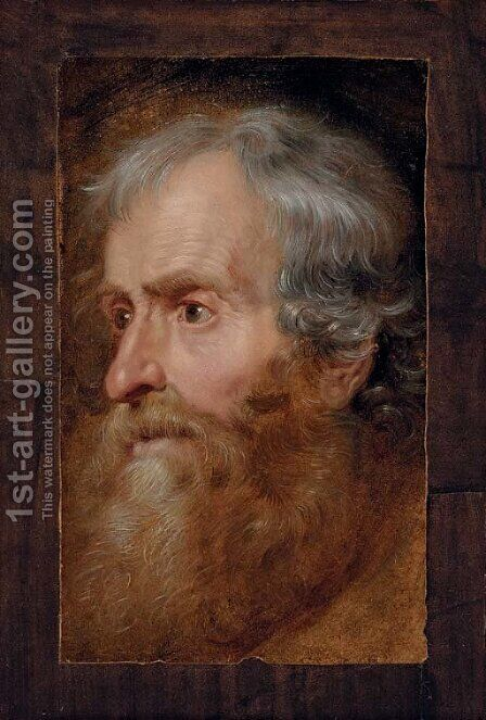 Head of an old man by (after) Dyck, Sir Anthony van - Reproduction Oil Painting