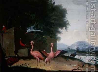 An Assembly of Exotic Birds, Including Flamingoes, Parrots and a Lady Amherst Pheasant by Jan Gerritsz. van Bronckhorst - Reproduction Oil Painting