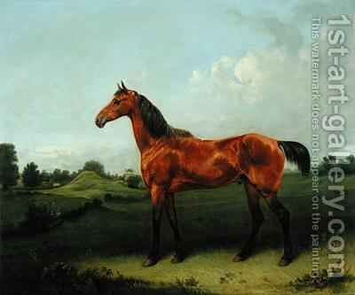 A Bay Horse in a Field by Edmund Bristow - Reproduction Oil Painting