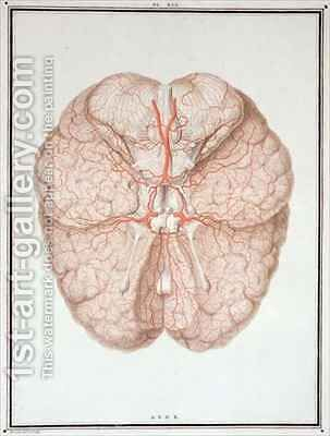 The Brain, from 'Traite d'Anatomie de Cerveau' by Alexandre Briceau - Reproduction Oil Painting