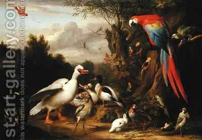 A Macaw, Ducks, Parrots and Other Birds in a Landscape by (after) Boggi, Giovanni - Reproduction Oil Painting