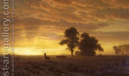 Wapiti by Albert Bierstadt - Reproduction Oil Painting