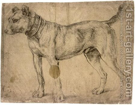 Study Of A Hound, In An Ornate Collar by (after) Anthonis Mor Van Dashorst - Reproduction Oil Painting