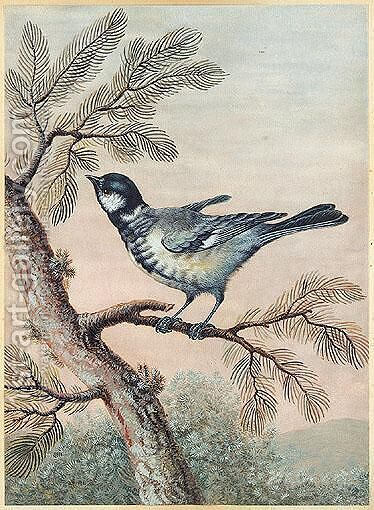 A blue tit perched on pine by Christoph Ludwig Agricola - Reproduction Oil Painting