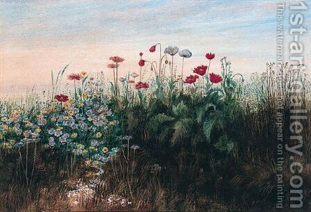 A Bank Of Wild Flowers by Andrew Nicholl - Reproduction Oil Painting