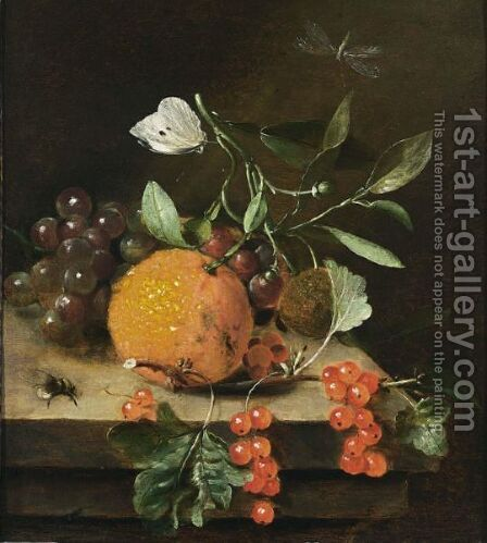 A Still Life Of An Orange, Grapes And Red Berries, Together With A White Butterfly, A Dragonfly And A Bee, All On A Wooden Ledge by Marten Nellius - Reproduction Oil Painting