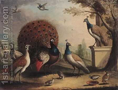 A Peacock And Peahens In An Ornamental Landscape by (after) Pieter Casteels III - Reproduction Oil Painting