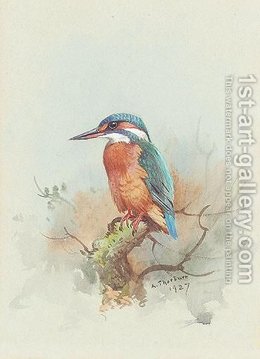 Kingfisher by Archibald Thorburn - Reproduction Oil Painting