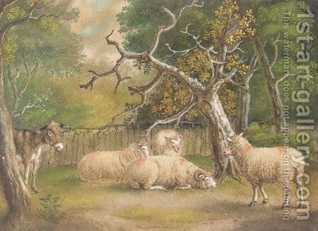 Donkey And Sheep by Benjamin Zobel - Reproduction Oil Painting