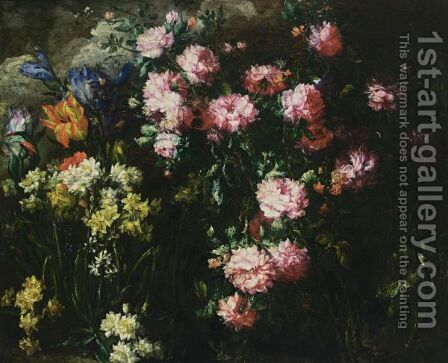 A Still Life With Pink Peonies, English Irises, Tulips, Daffodils And Other Flowers In A Field by (after) Margherita Caffi - Reproduction Oil Painting