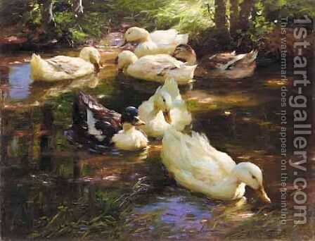 Enten Im Wasser Vor Baumufer (Ducks On A Pond) by Alexander Max Koester - Reproduction Oil Painting