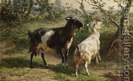 Two Goats by Jan Bedijs Tom - Reproduction Oil Painting