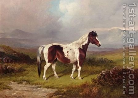 Gypsy by Colin Graeme Roe - Reproduction Oil Painting