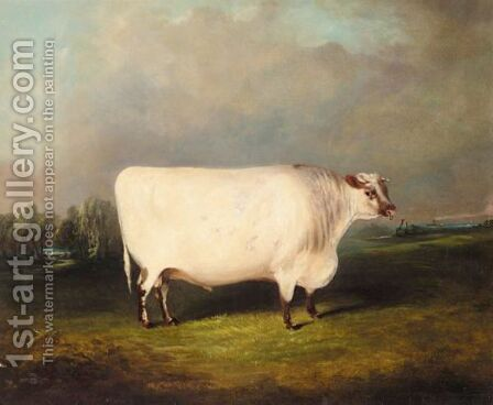 A Prize Shorthorn In A Landscape by James Senior Clark - Reproduction Oil Painting