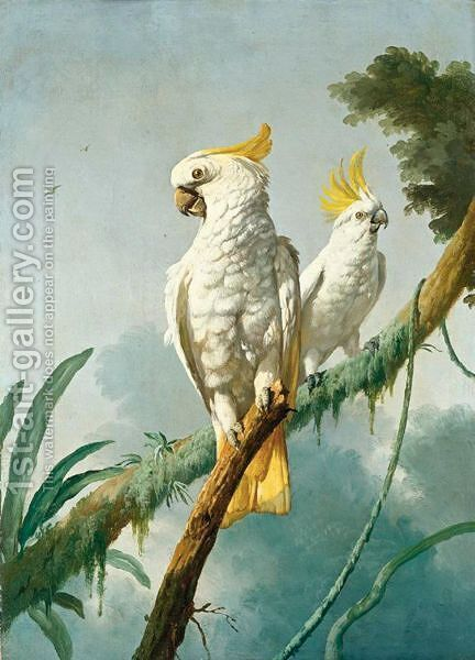 A Pair Of Sulphur-Crested Cockatoos by (after) Jacques Barraband - Reproduction Oil Painting
