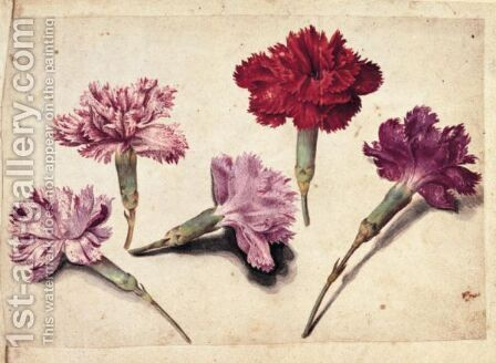 A Sheet Of Studies With Five Clove Pinks by Jacques (de Morgues) Le Moyne - Reproduction Oil Painting