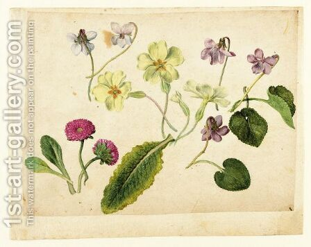 A Sheet Of Studies Of Flowers Two Double Daisies, Four Primroses And Five Violets With Separate Studies Of Their Leaves by Jacques (de Morgues) Le Moyne - Reproduction Oil Painting