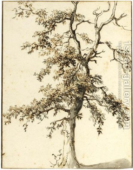 Study Of A Tree by Dutch School - Reproduction Oil Painting