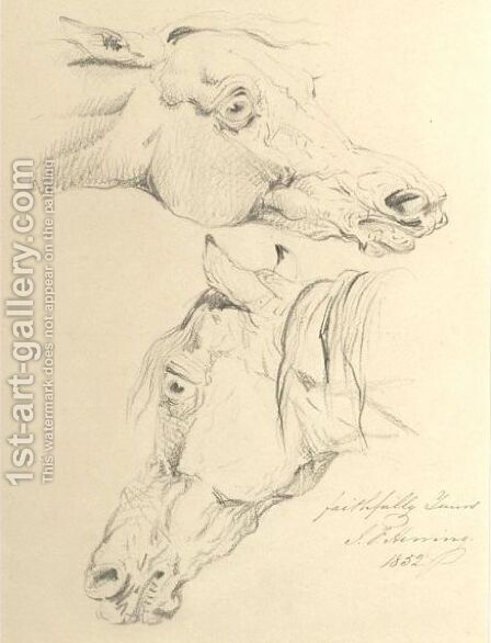 Studies Of A Horse's Head by (after) John Frederick Herring - Reproduction Oil Painting