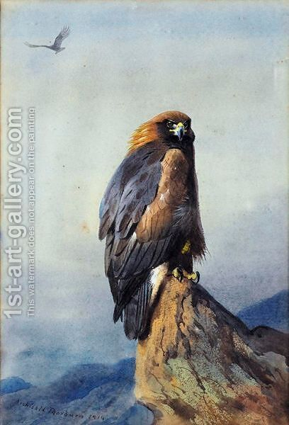 A Golden Eagle 2 by Archibald Thorburn - Reproduction Oil Painting