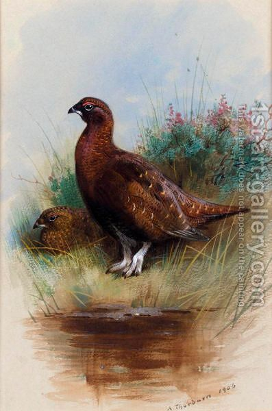 A Cock And Hen Red Grouse by Archibald Thorburn - Reproduction Oil Painting