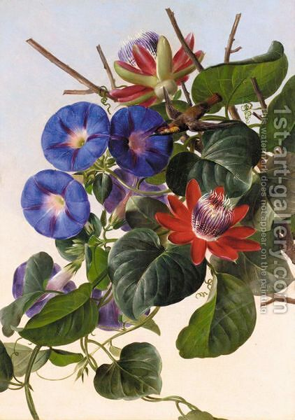 Passionflowers And Hummingbird by (after) Johann Laurentz Jensen - Reproduction Oil Painting