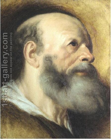 Portrait Of A Bearded Man by (after) Jacob Jordaens - Reproduction Oil Painting