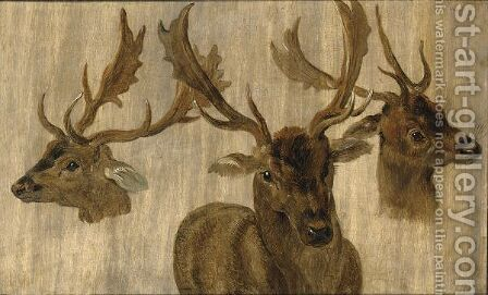 Three Head Studies Of A Roebuck by Jan, the Younger Brueghel - Reproduction Oil Painting