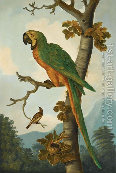 Still Life With A Parrot Perched On A Branch by (after) Tobias Stranover - Reproduction Oil Painting
