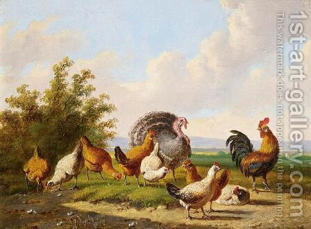 Poultry In A Summer Landscape by Albertus Verhoesen - Reproduction Oil Painting