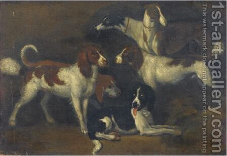 Study Of Dogs by Adriaen Cornelisz. Beeldemaker - Reproduction Oil Painting