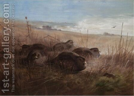 A Moonlight Night In The Open, Grey Partridges by Archibald Thorburn - Reproduction Oil Painting