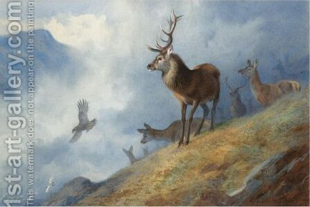 Red Deer Watching A Golden Eagle Hunt Ptarmigan by Archibald Thorburn - Reproduction Oil Painting