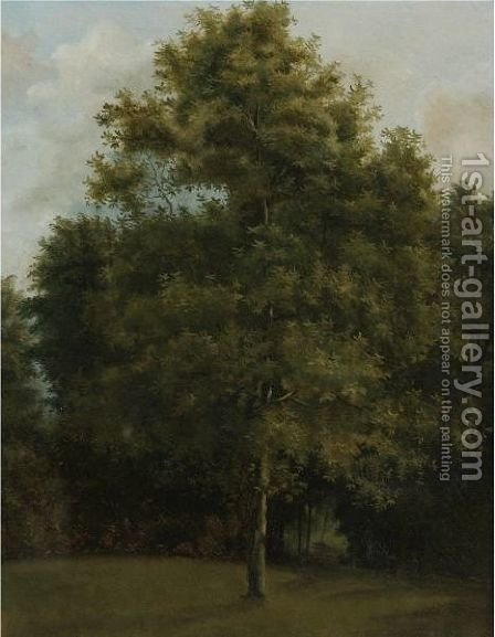 Study Of A Tree by (after) Jules Louis Phillipe Coignet - Reproduction Oil Painting