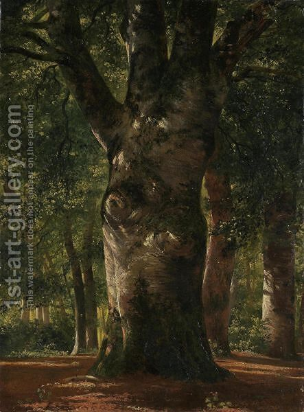 Tronc De Hetre  Stem Of A Beech Tree by Alexandre Calame - Reproduction Oil Painting