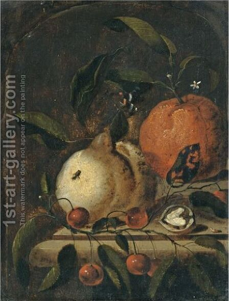 A Still Life With A Lemon, And Orange And A Walnut Together On A Ledge by Marten Nellius - Reproduction Oil Painting