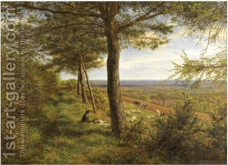 Firs And Furze by James Thomas Linnell - Reproduction Oil Painting