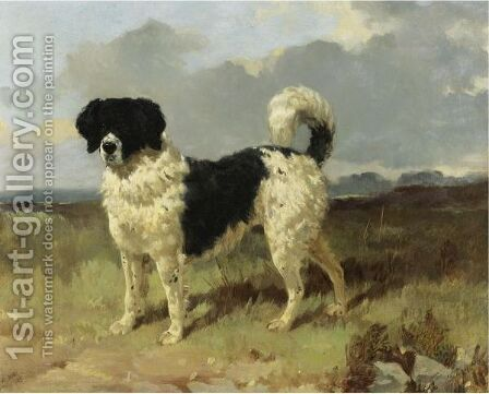 A Newfoundland Landseer In A Landscape by Harry Hall - Reproduction Oil Painting