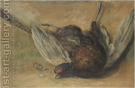A Cock Pheasant by David Cox - Reproduction Oil Painting