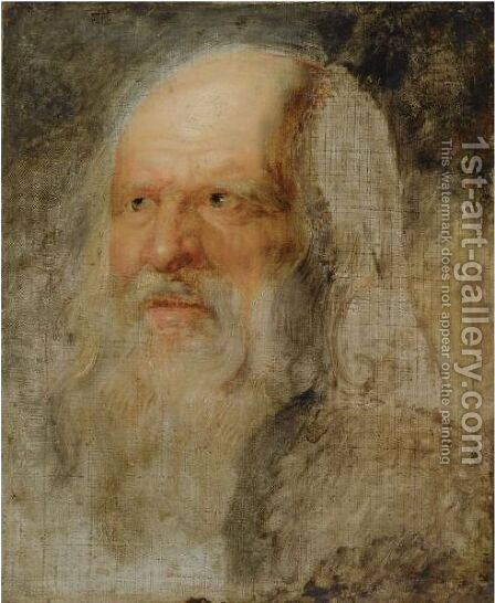 Head Of An Old Man by (after) Sir Peter Paul Rubens - Reproduction Oil Painting