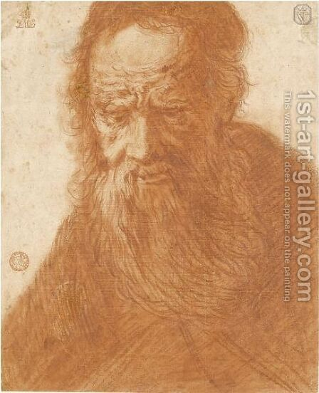 Head Of A Bearded Old Man by (after) Jacques Des Rousseaux - Reproduction Oil Painting