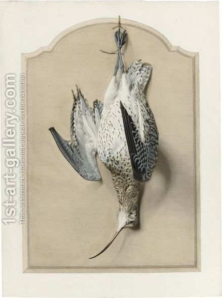 Trompe L'Oeil With A Curlew by Edouard Travies - Reproduction Oil Painting