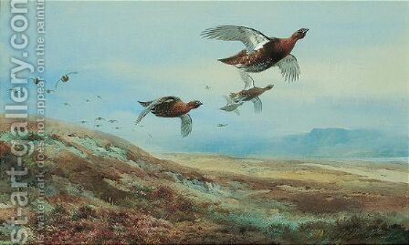 Grouse Over The Moor 2 by Archibald Thorburn - Reproduction Oil Painting