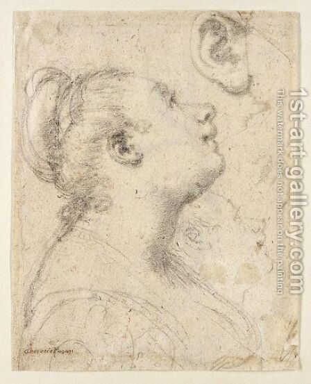 Study Of The Head And Shoulders Of A Woman In Profile And Separate Studies Of Her Head And Ear by Gregorio Pagani - Reproduction Oil Painting