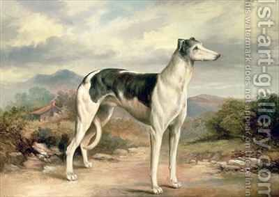 A Greyhound in a hilly landscape by James Beard - Reproduction Oil Painting
